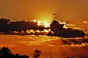 Hope Sunset