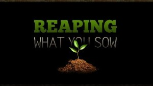 Reaping What You Sow